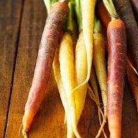 Gratin de carottes et de panais