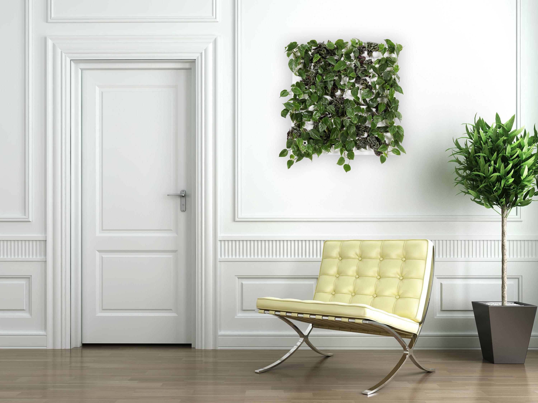 Mur v g tal un minijardin l int rieur ch telaine - Mur de fleur interieur ...