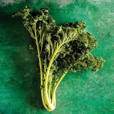 legumes-verts-1-400