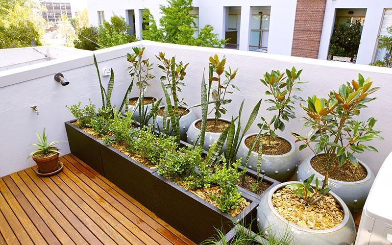 8 conseils pour am nager un jardin sur son balcon ch telaine - Jardin au balcon ...