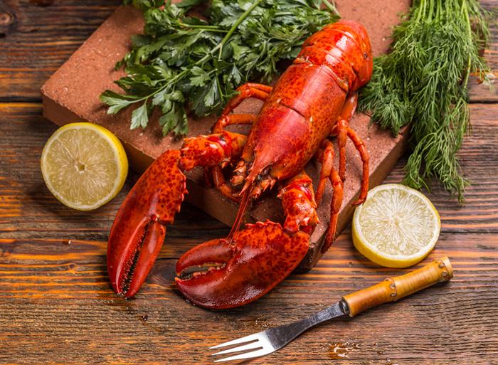 5 questions sur le homard du qu bec ch telaine - Comment cuisiner le homard ...