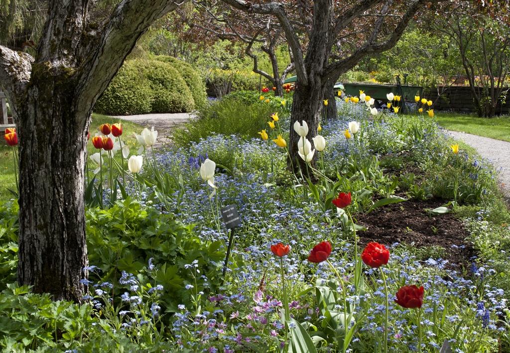 Les 15 plus beaux jardins du Québec - Châtelaine
